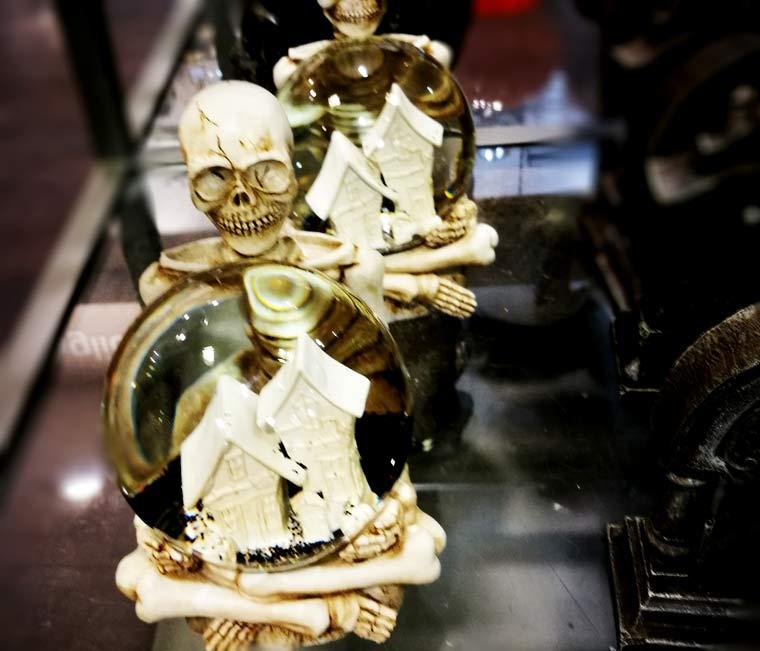 skelet3